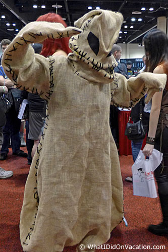 MegaCon 2015 cosplay burlap