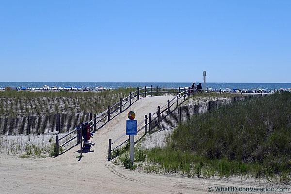 north Wildwood Beach dune