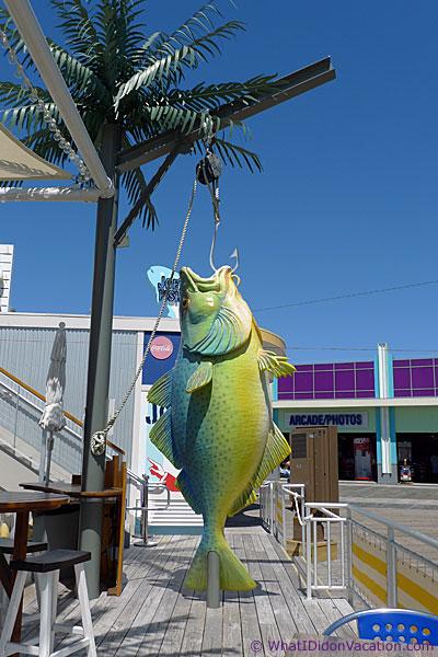 Joes Fish Company