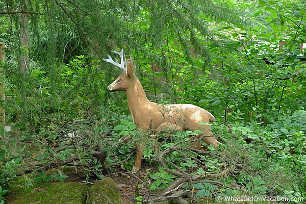 Cape May County Zoo fake deer